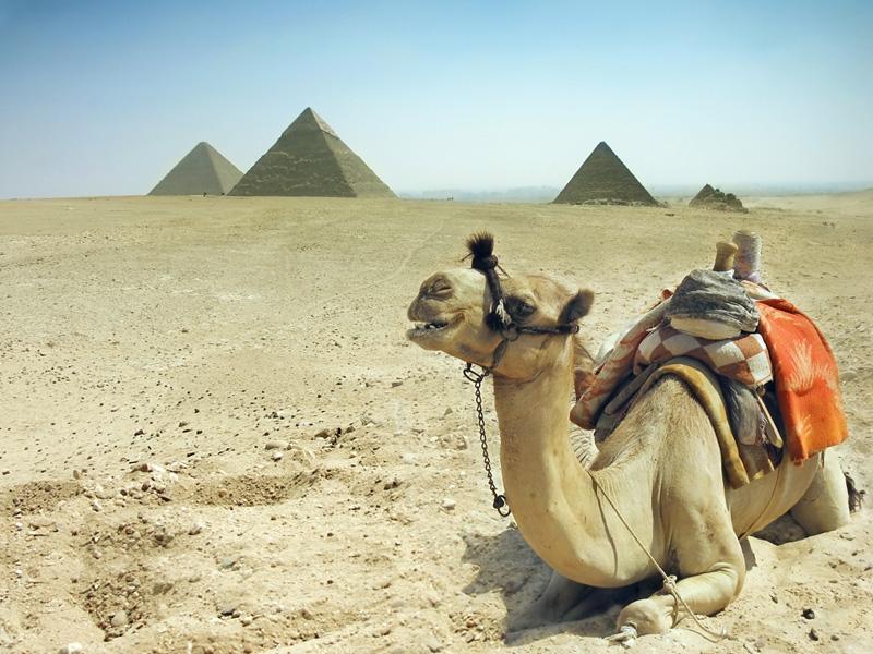 Vista Panoramica delle Piramidi