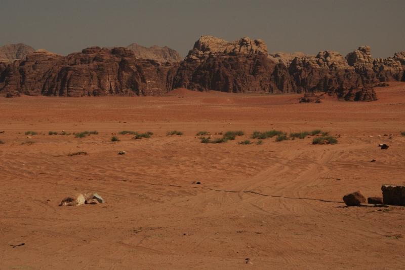Wadi Rum Beautiful Desert