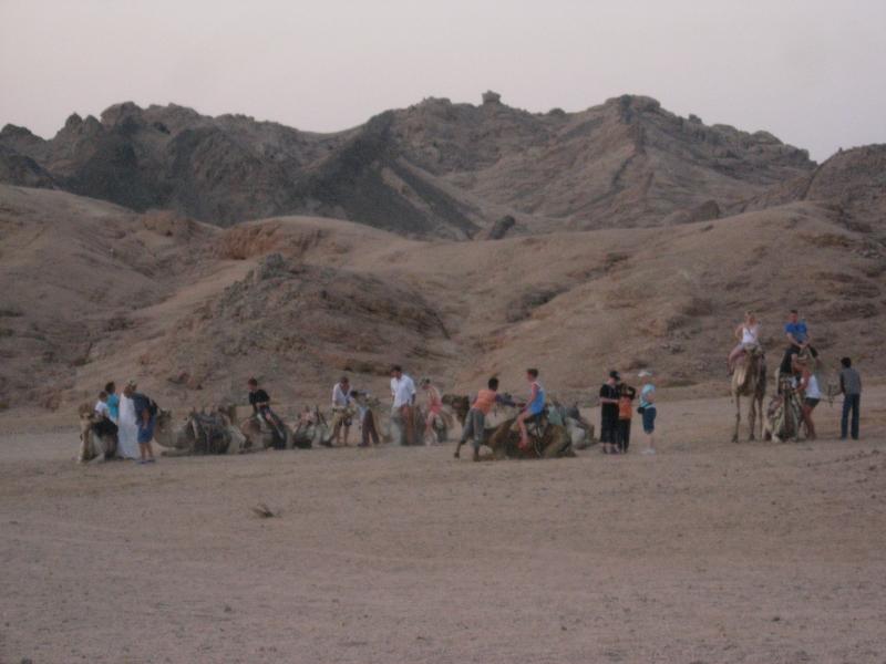 Bedouin Village in Sinai Desert