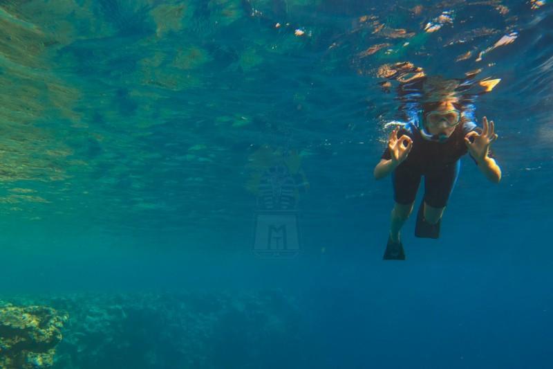 Snorkeling na ilha de Tiran em Sharm