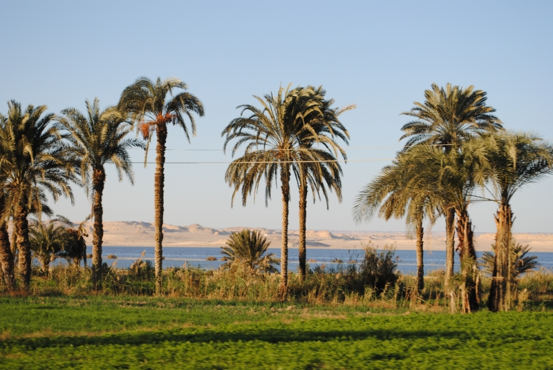 View from Tunis Village Fayoum