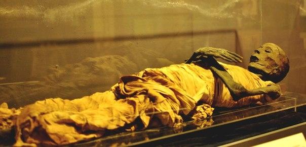 Sala delle Mummie