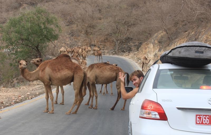 The Roads in Dhofar
