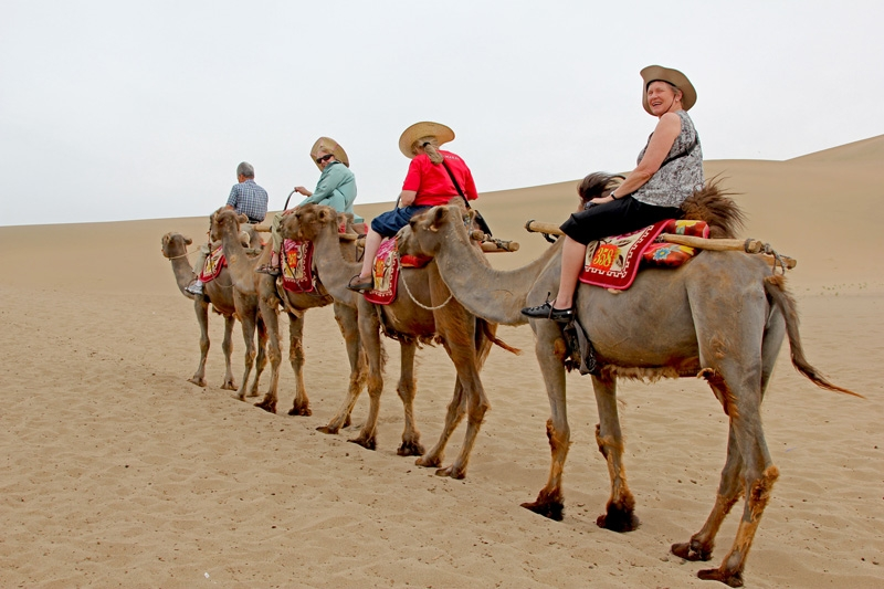 Camel Ride Safari in Hurghada