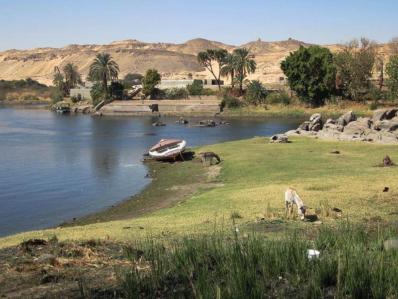 Relaxing in Elephantine Island