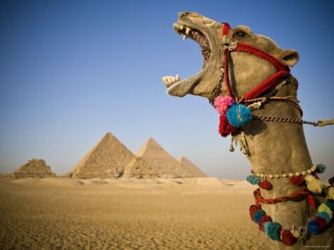 Dois dias no Cairo e Luxor de avião
