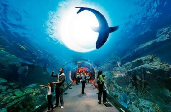 Dubai Aquário