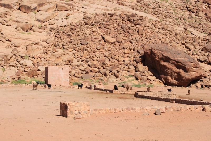 Lawrence's Spring in Wadi Rum