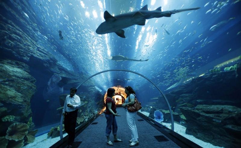 New England Aquarium Hotel Packages