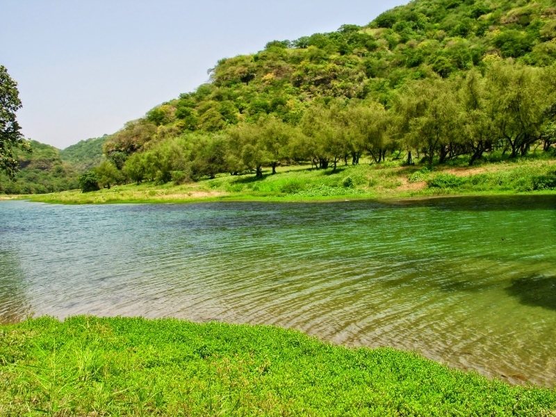 Best of Dubai and Salalah