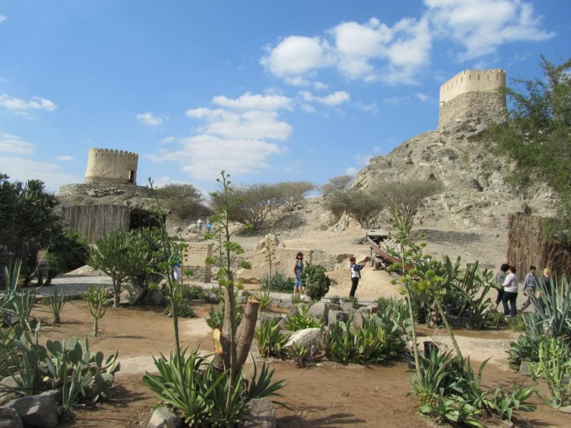 Al Thowara Oasis