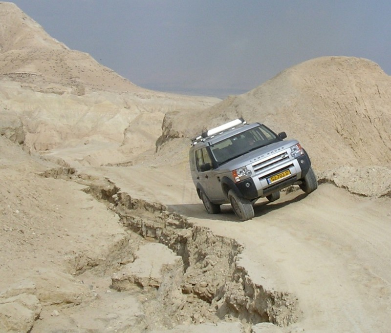 Enjoy Safari with 4x4