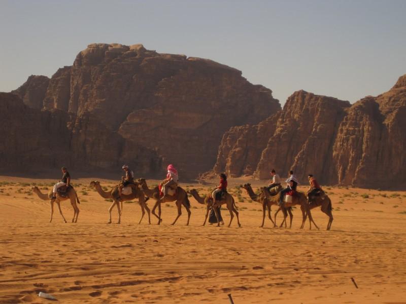 Camel Riding Trip in Sinai Desert