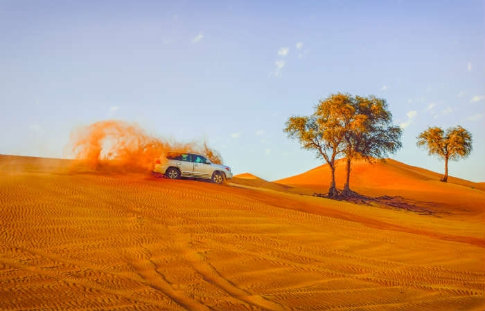 Excursión Desierto Dubai