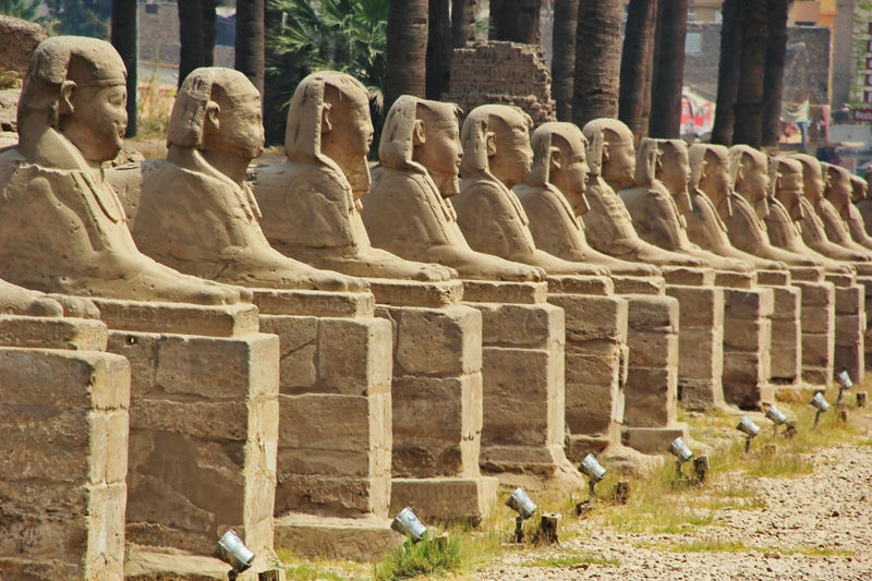Avenue of Sphinx at The Entrance of Luxor Temple