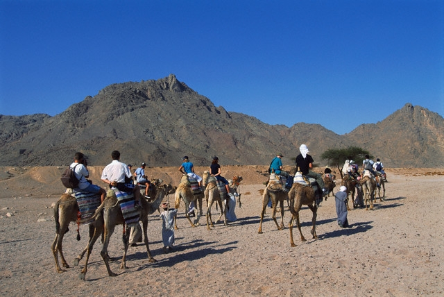 Desert Safari Trip in Hurghada with a Camel ride