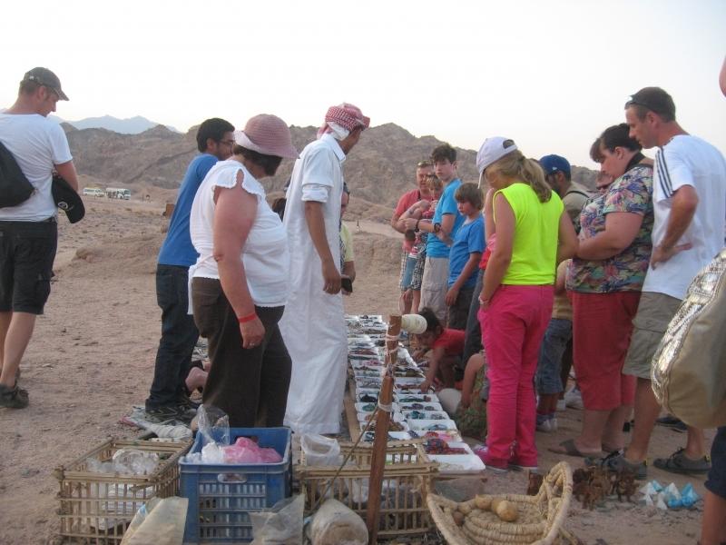 Balade à dos de dromadaire dans le désert de Charm