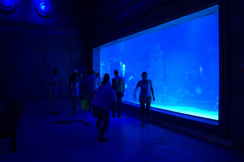The Aquarium at Hurghada