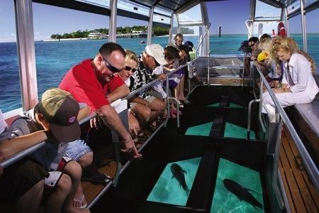 Tour su barca con fondo di vetro,Tube Boat e Parasailing