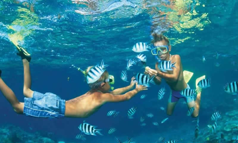 Snorkelling at Hurghada