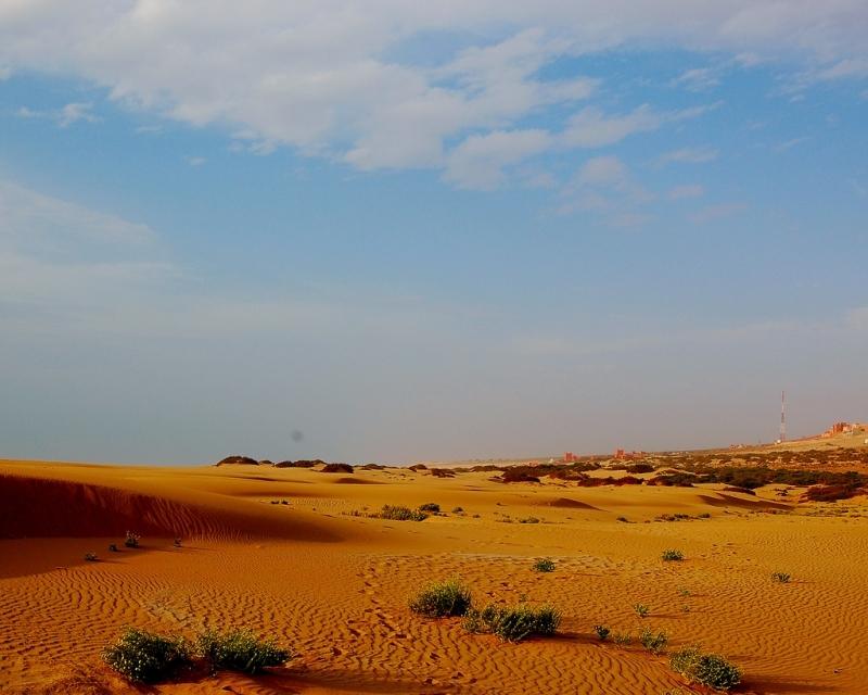 Parco Nazionale di Souss Massa, Agadir