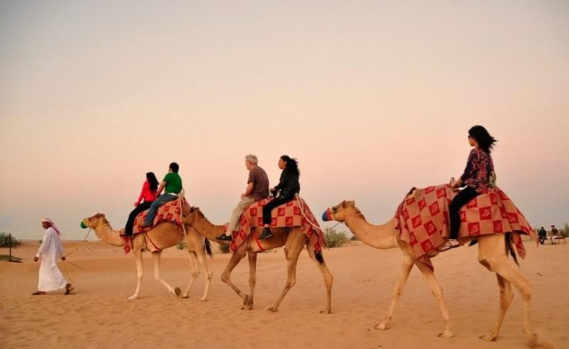 Safari por el Desierto