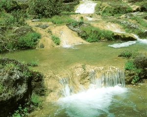 Springs in Dhofar Oman