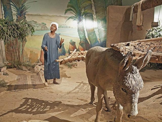 Nubian Farmer Model