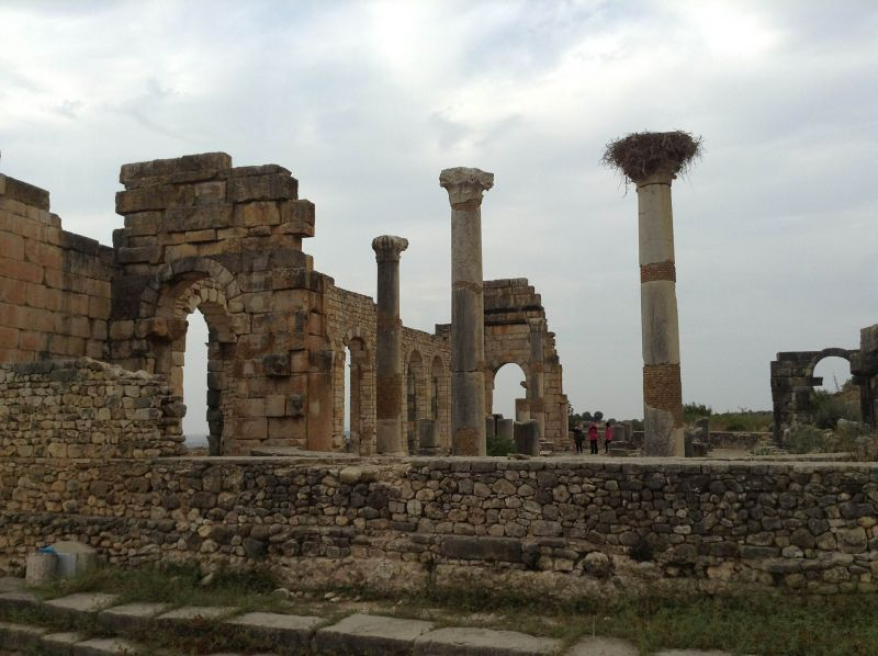 Volubilis Archaeological Site