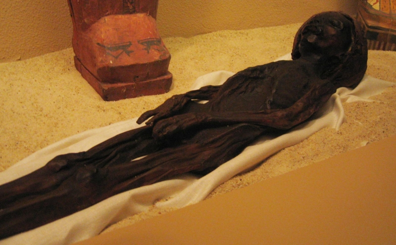 Mummy inside the Mummification Museum