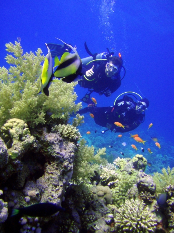 Sharm El Sheikh Introductory Diving