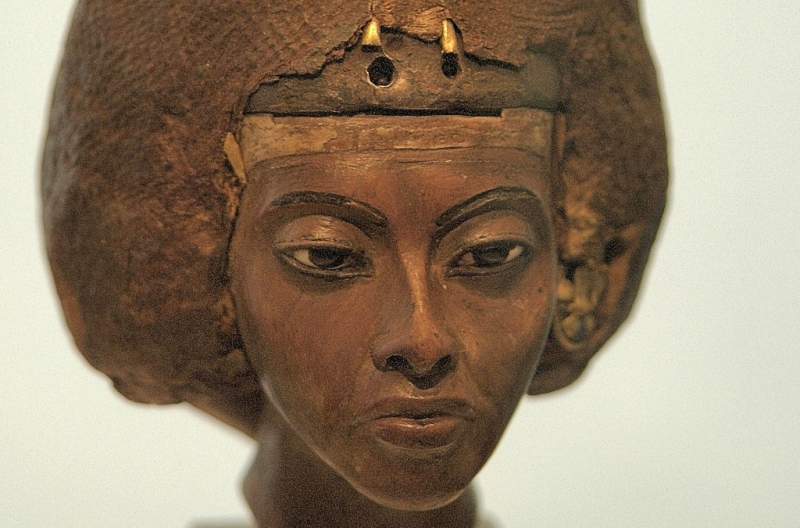 Head of the Queen Tiye Mother of Akhenaten