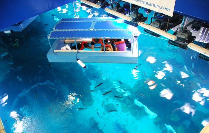 Glass-Bottom Boat Tour in Sharm