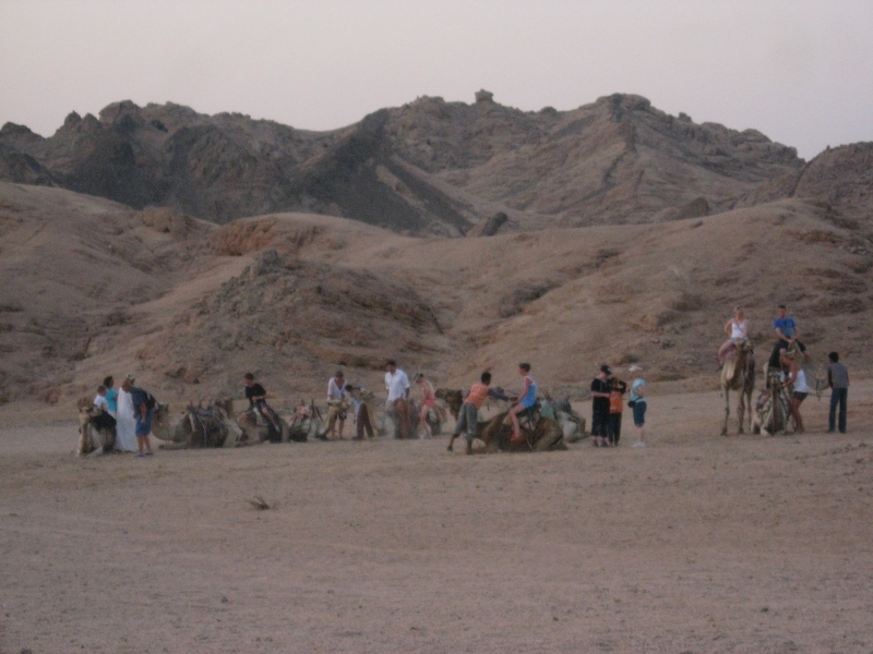 Camel Riding Adventure