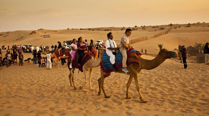 Passeio à camelo