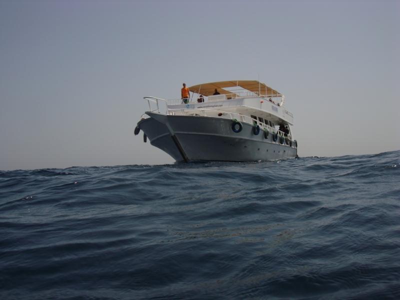 Dive Boat, Sharm El Sheikh