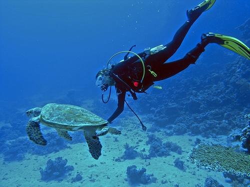 Water Activities in Aqaba