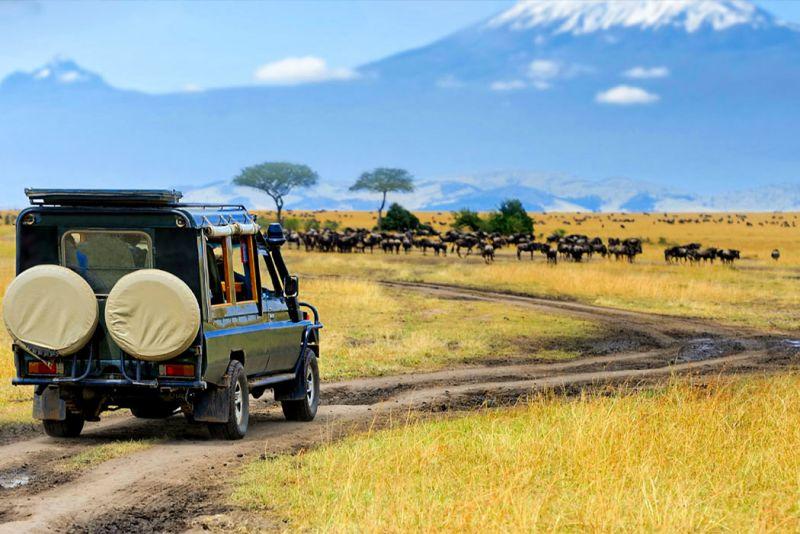Masai Mara Kenya National Park