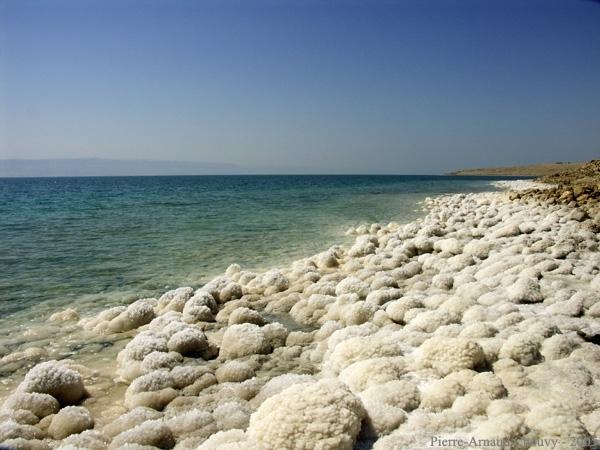 Rivage de la Mer Morte