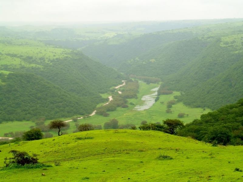 Salalah Green Mountain