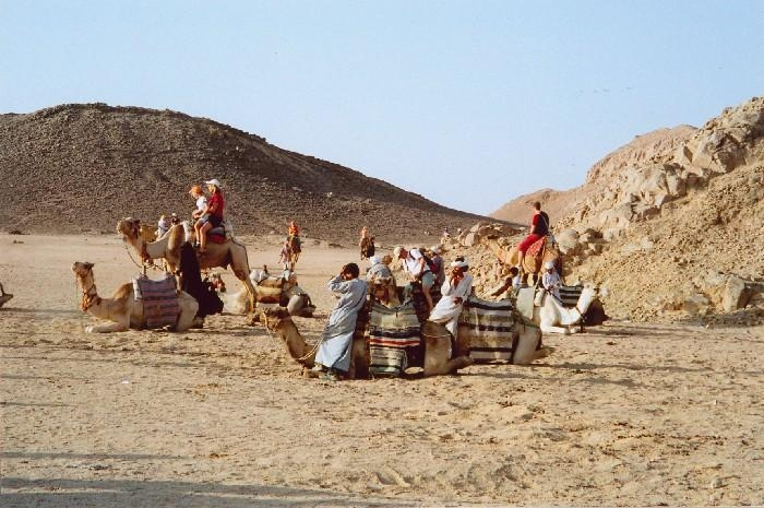 Camel Ride in Hurghada Desert
