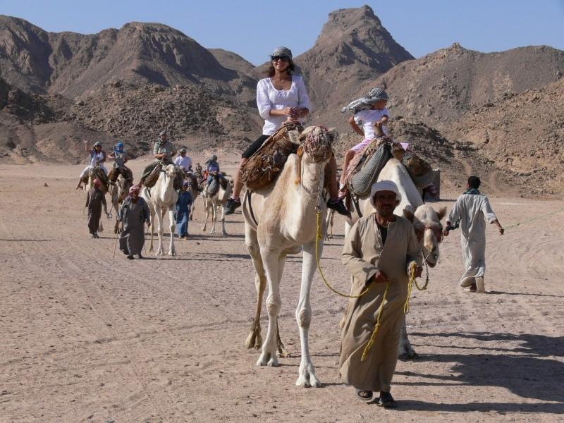 Cammellata Nel Deserto di Hurghada