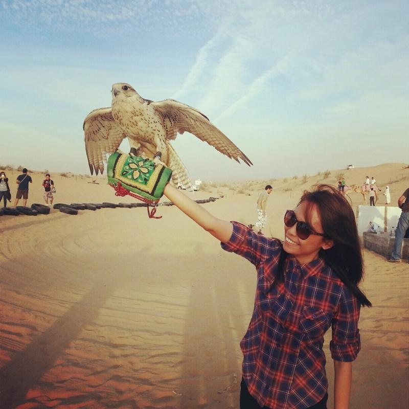 Experiênica com Falcões, Deserto de Dubai