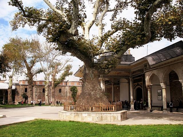 Topkapi Palace from inside