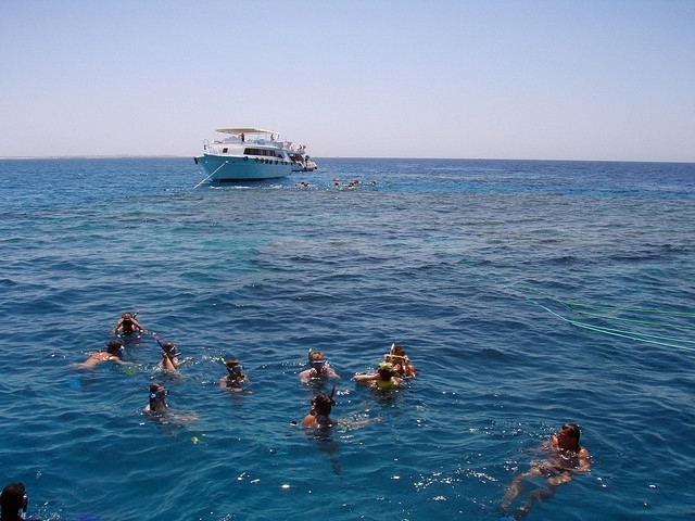 Snorkeling in The Red Sea, Egypt