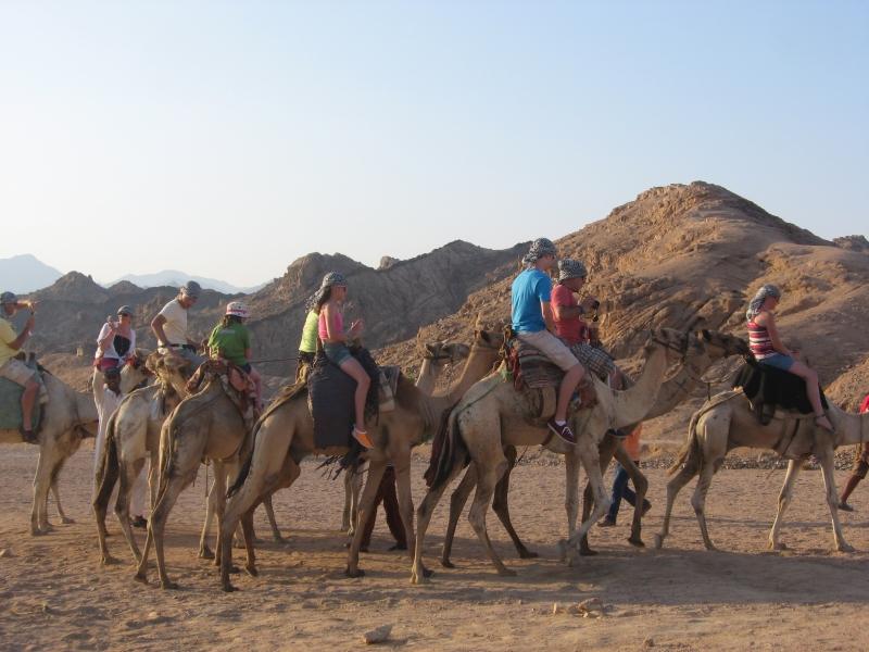 Camel Ride in Sharm desert