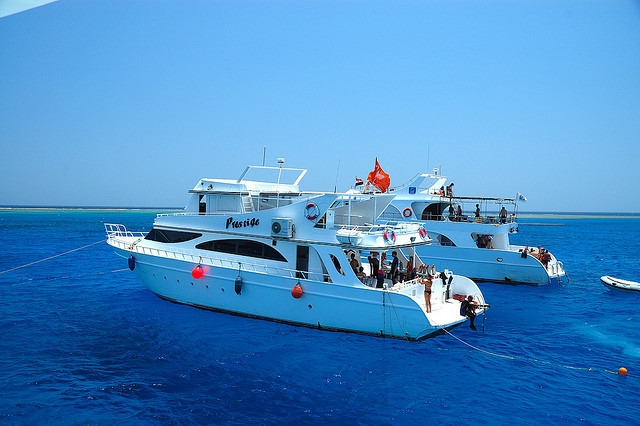 Dolphin House Snorkeling Boat
