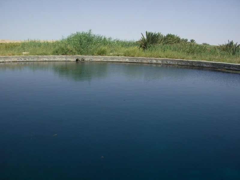El Fayoum Lake Qarun