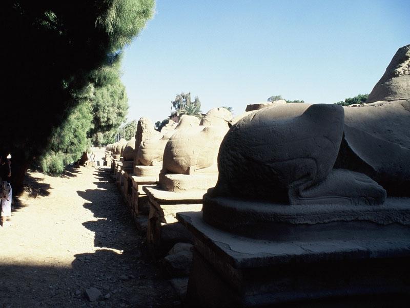 Ausflug Safaga nach Luxor ab AIDA