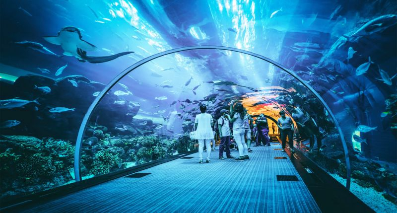 Dubai Mall Information and Facts